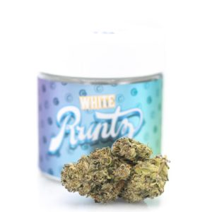 buy white runtz