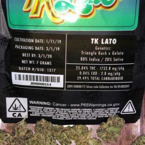 Jungle boys TK Lato