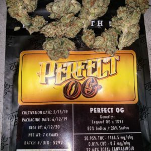 Jungle Boys Perfect OG