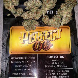 Jungle Boys Perfect OG